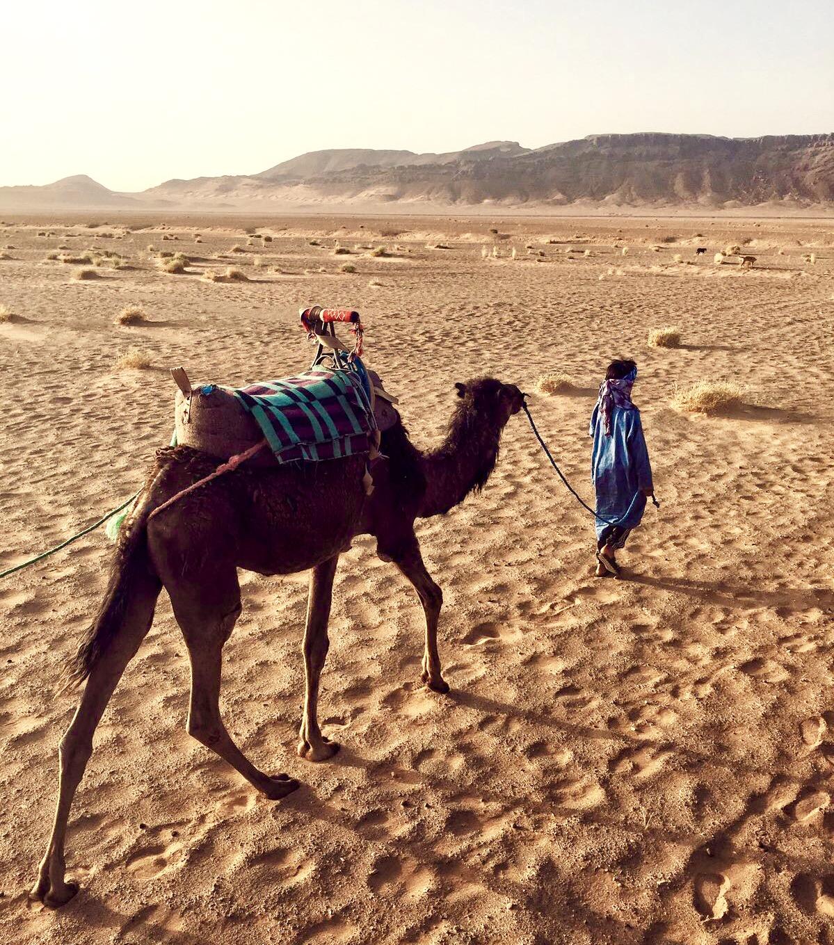 berber_kid_camel_morocco_lustforthesublime