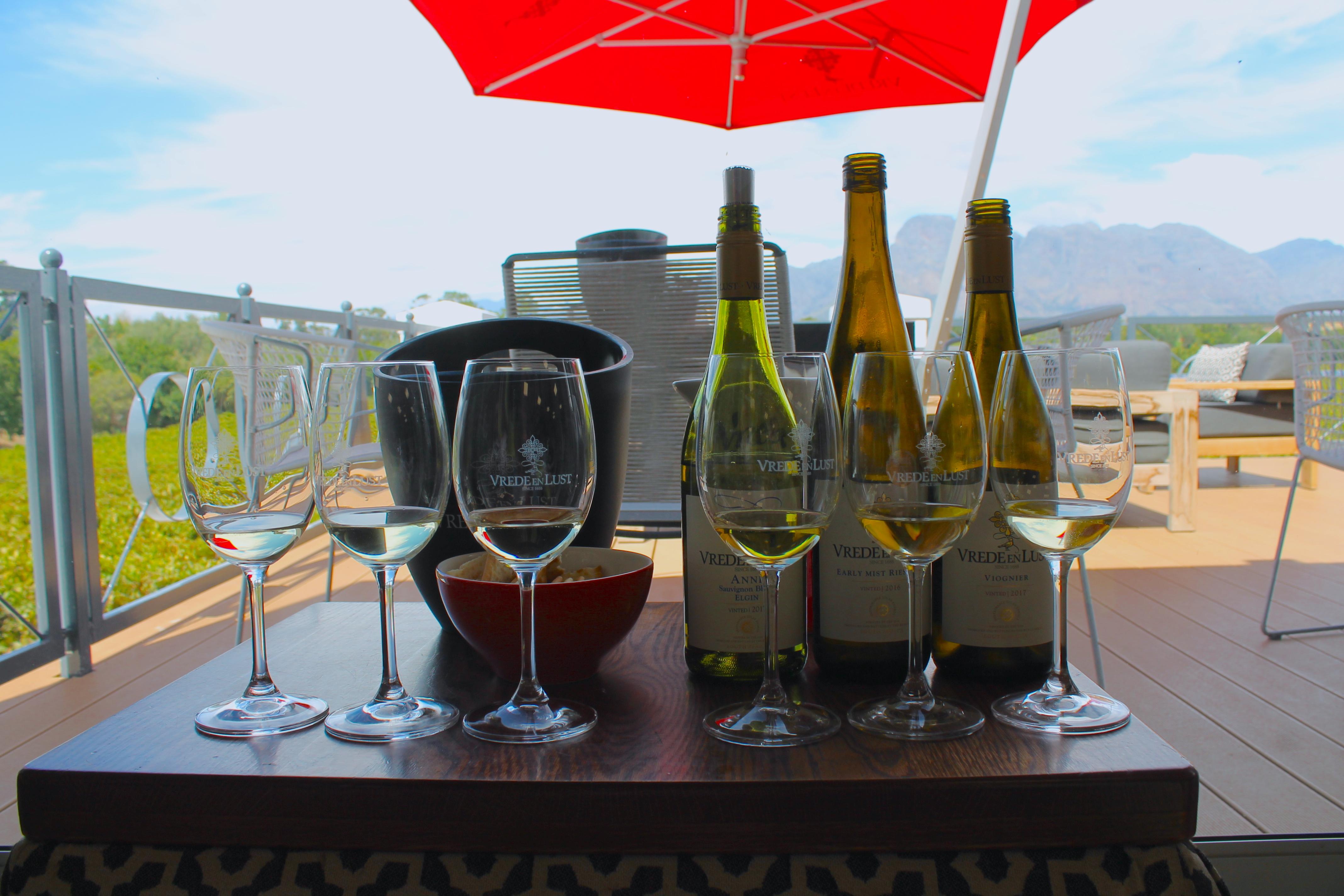 wine-tasting-vrede-en-lust-lustoforthesublime