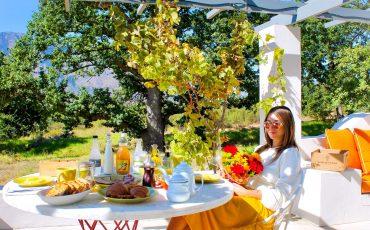 boschendal-stellenbosch-southafrica-lustforthesublime
