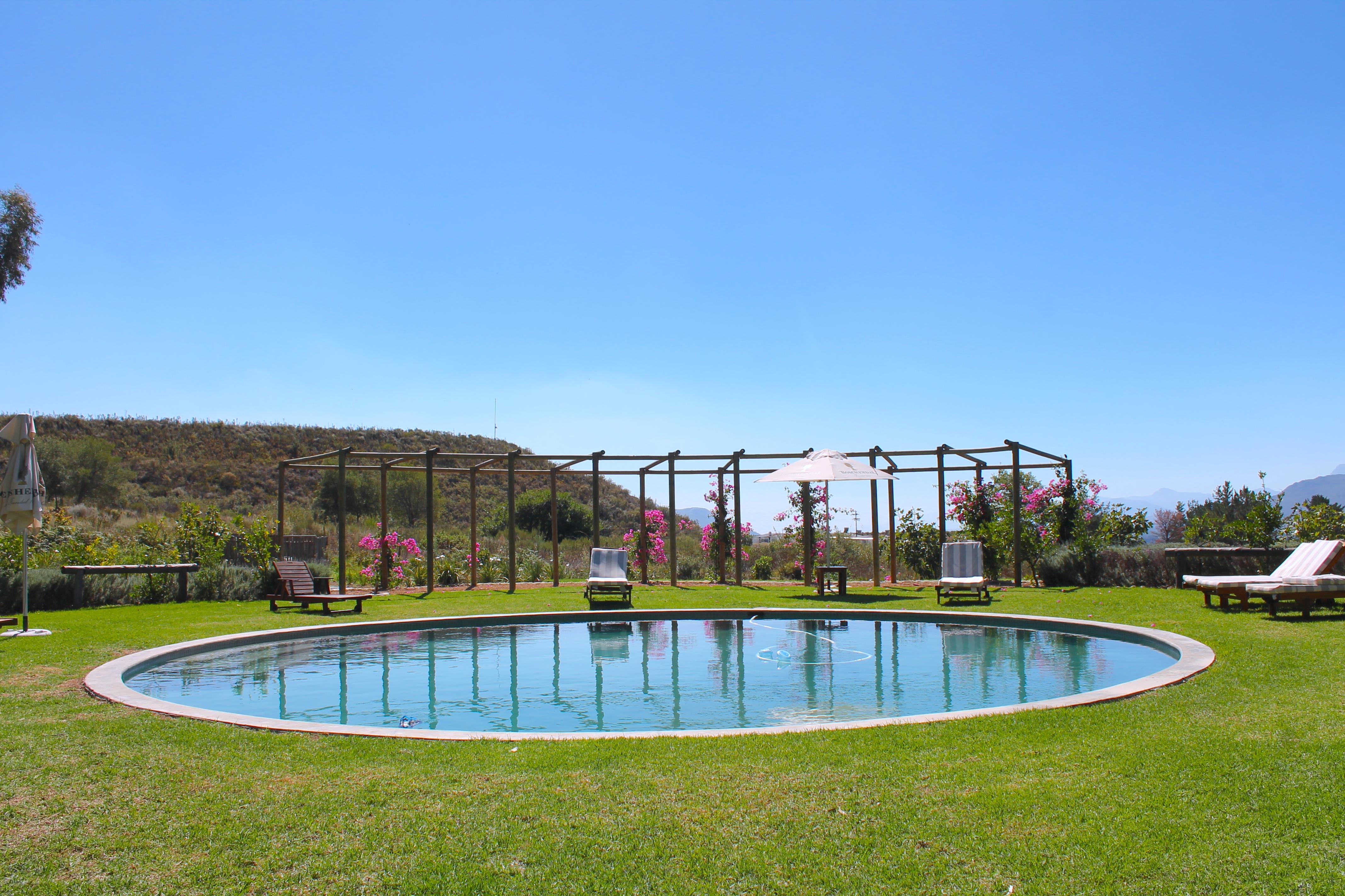 orchard-cottages-pool-boschendal-lustforthesublime
