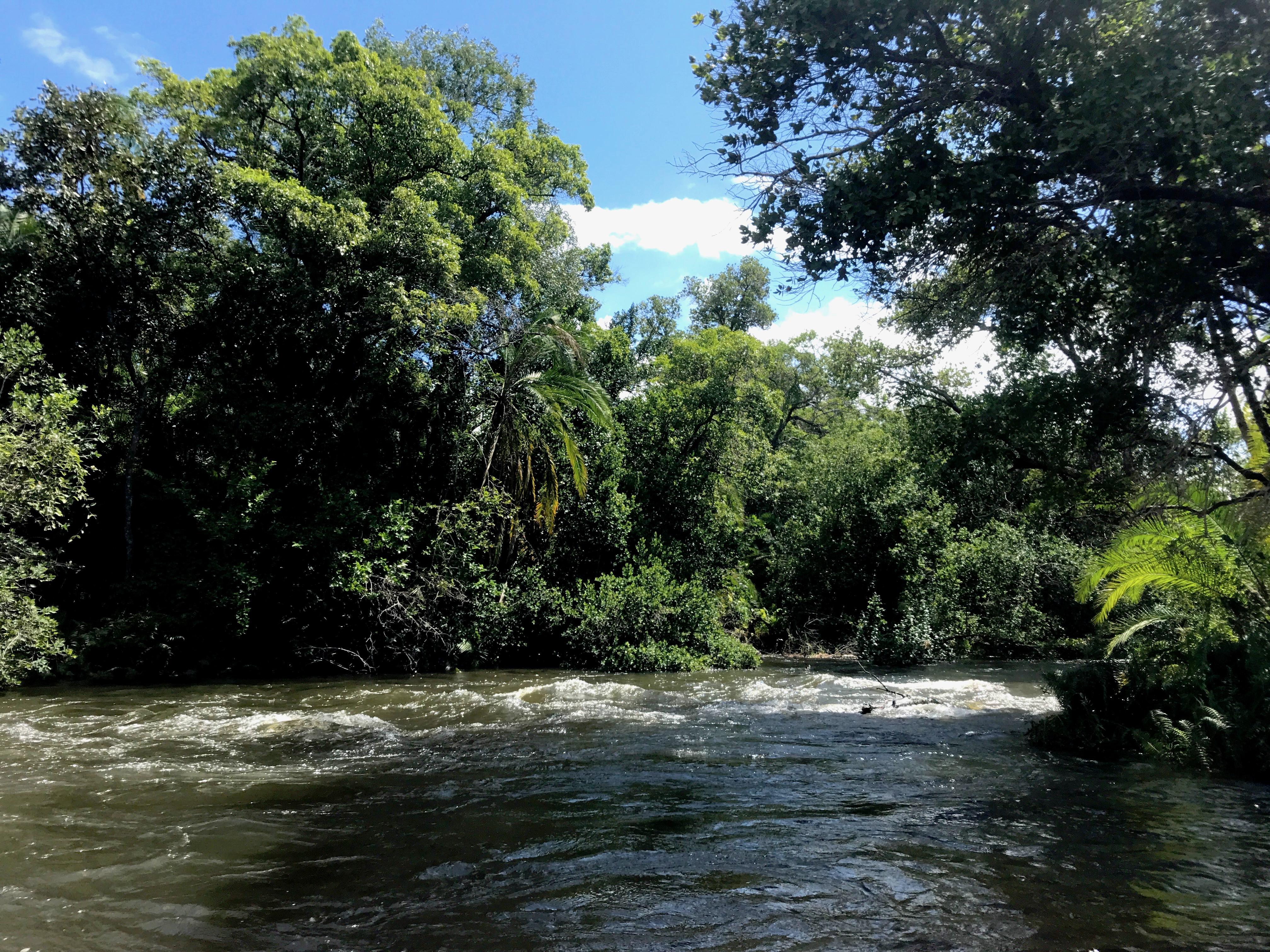 zambezi-river-royalchundu-lustforthesublime