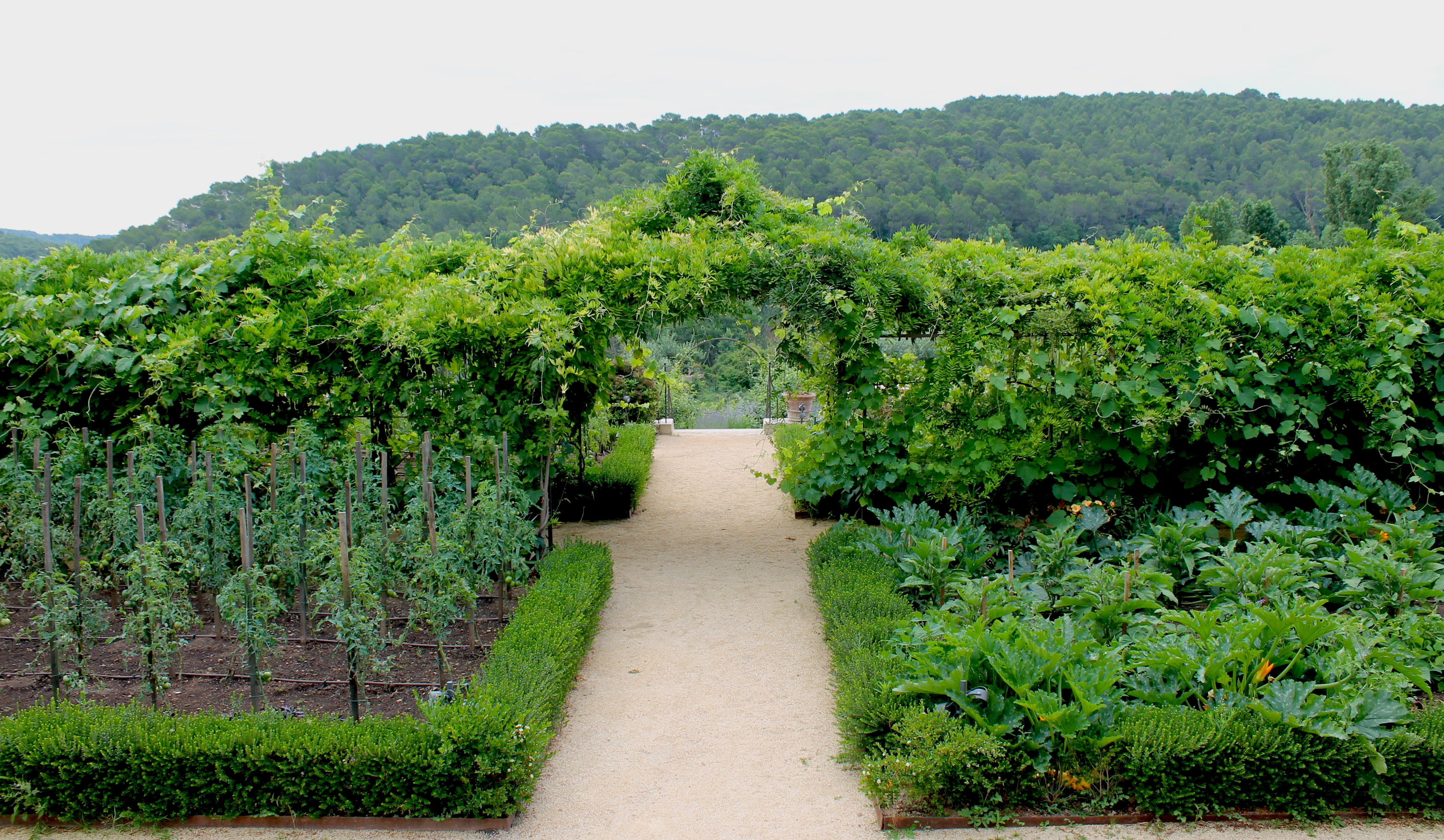 garden-chateaudeberne-provence-lustforthesublime