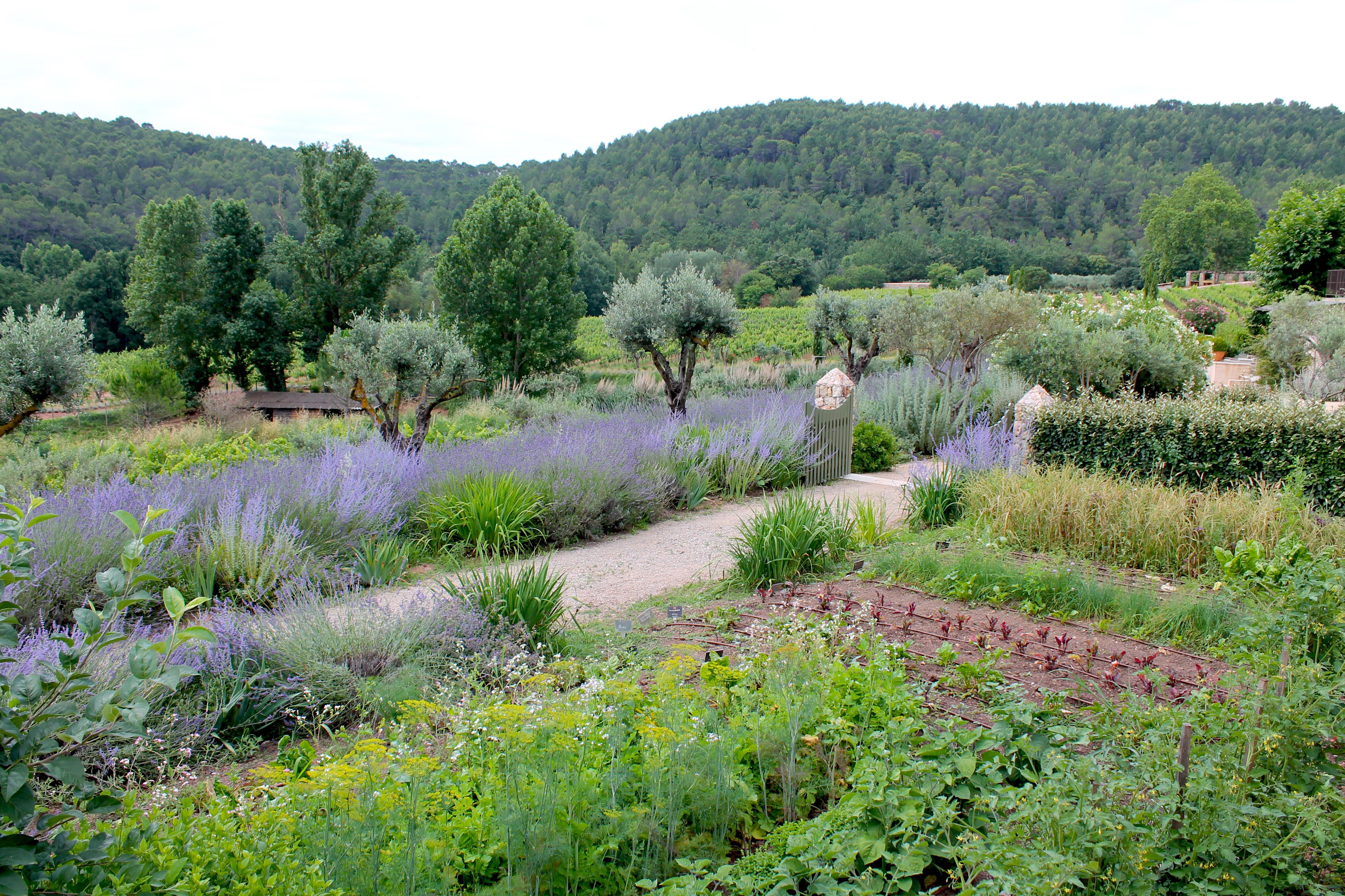 chateaudeberne-garden-lustforthesublime