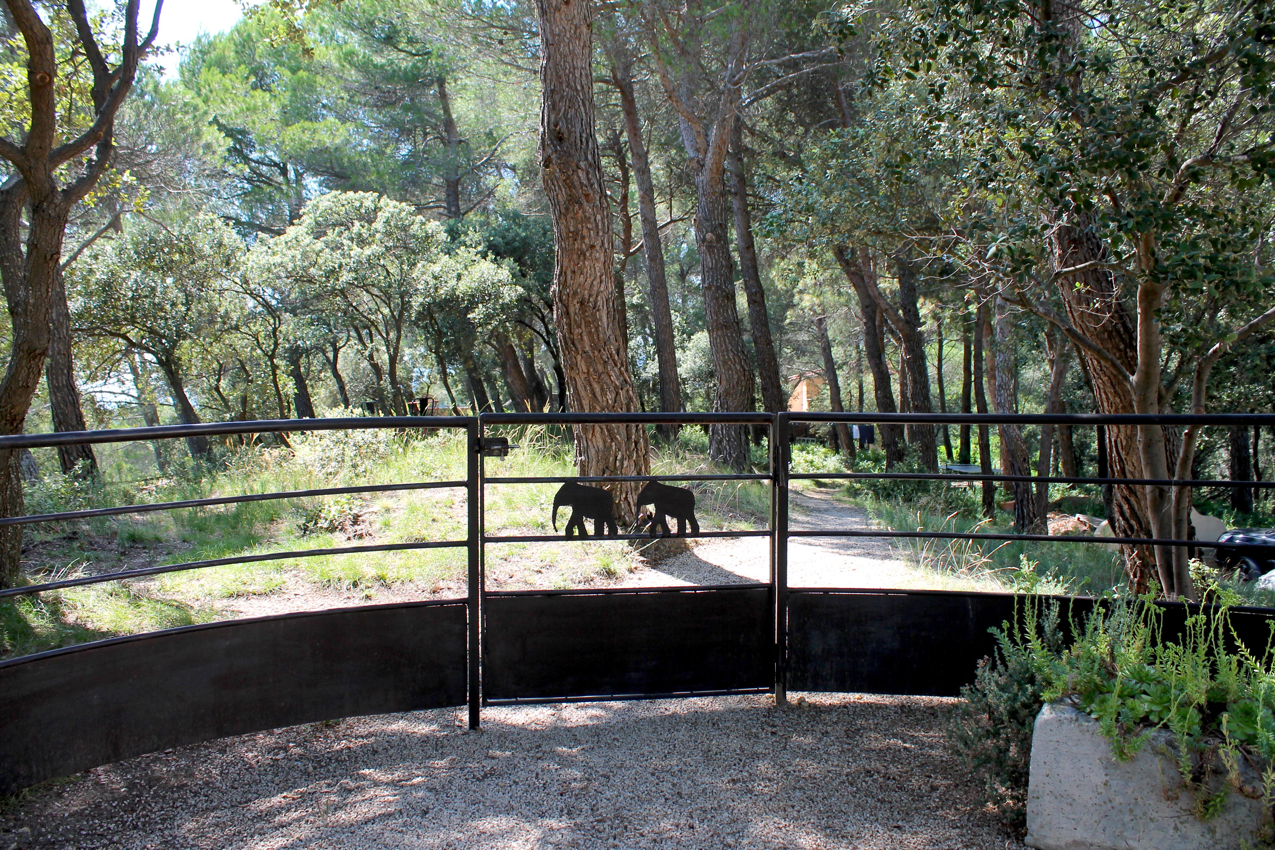 elephant-de-vaugines-provence-lustforthesublime