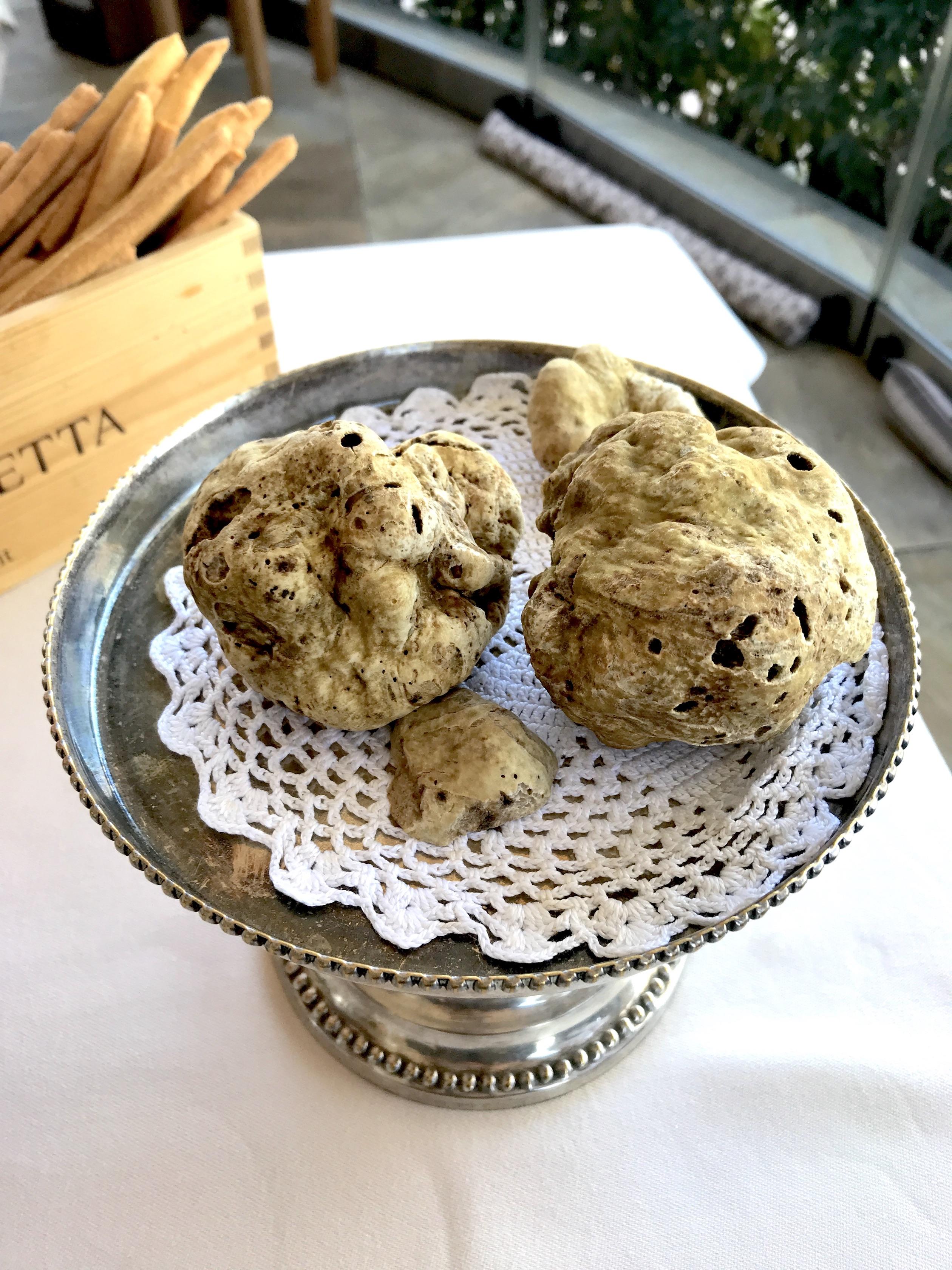 alba-white-truffle-piedmont-italy-lustforthesublime